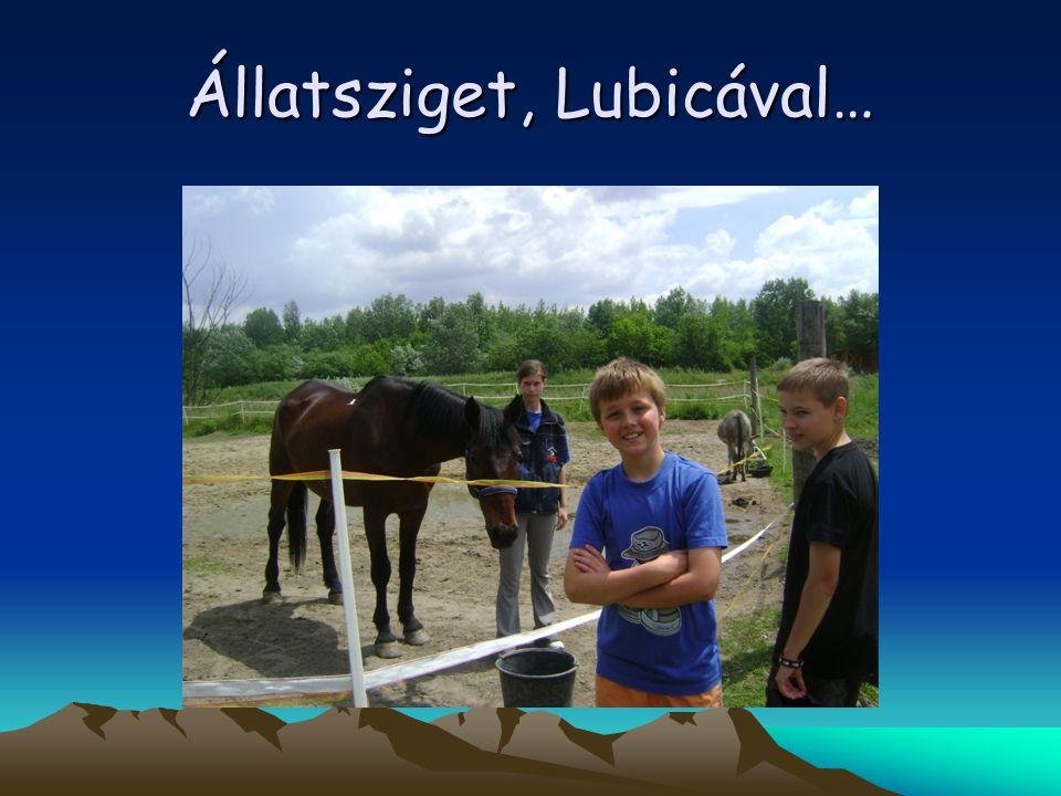 Állatsziget, Lubicával…