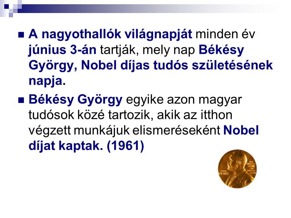 A nagyothallók világnapját minden év június 3-án tartják, mely nap Békésy György, Nobel díjas tudós születésének napja.