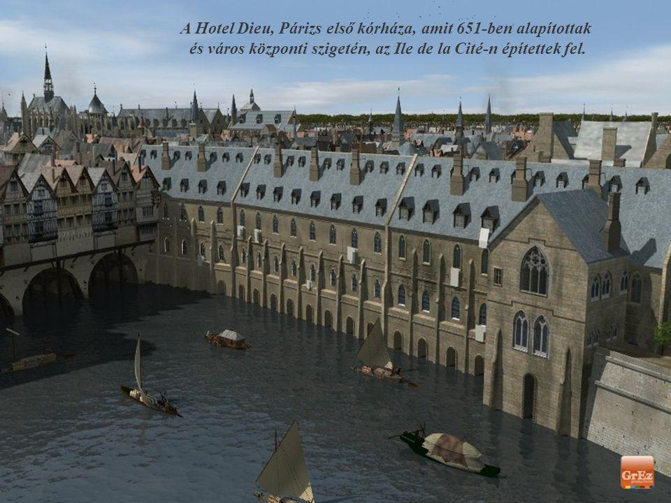 Kilátás a Szajna bal partjáról a Petit Châtelet teraszáról. Alul látható a Petit Pont házakkal beépített híd, hátul a Notre Dame.