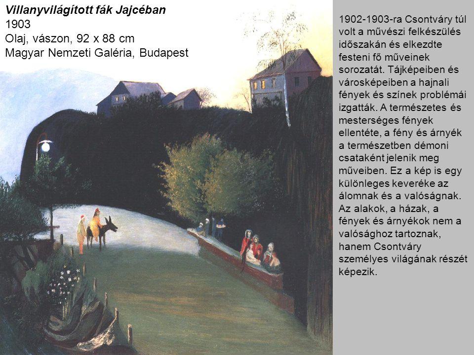 Villanyvilágított fák Jajcéban 1903 Olaj, vászon, 92 x 88 cm Magyar Nemzeti Galéria, Budapest 1902-1903-ra Csontváry túl volt a művészi felkészülés időszakán és elkezdte festeni fő műveinek sorozatát.