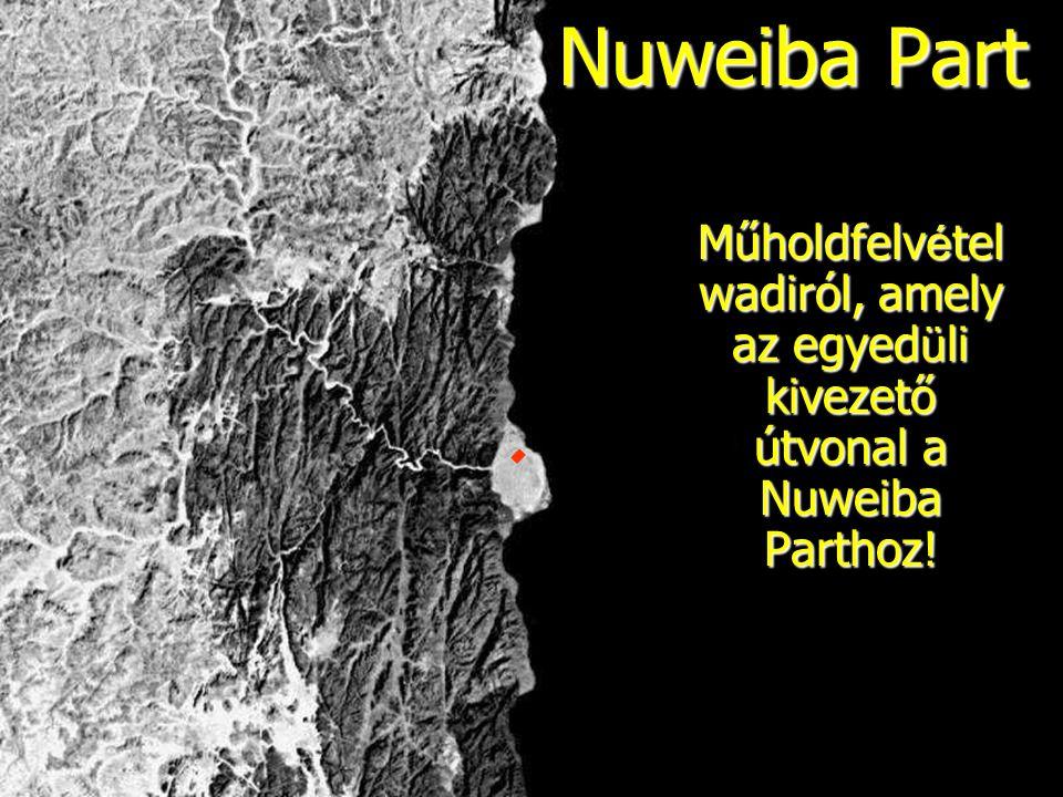 Nuweiba Part Műholdfelv é tel wadiról, amely az egyed ü li kivezető útvonal a Nuweiba Parthoz!