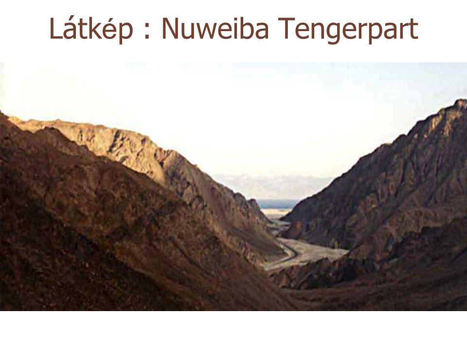 Látk é p : Nuweiba Tengerpart