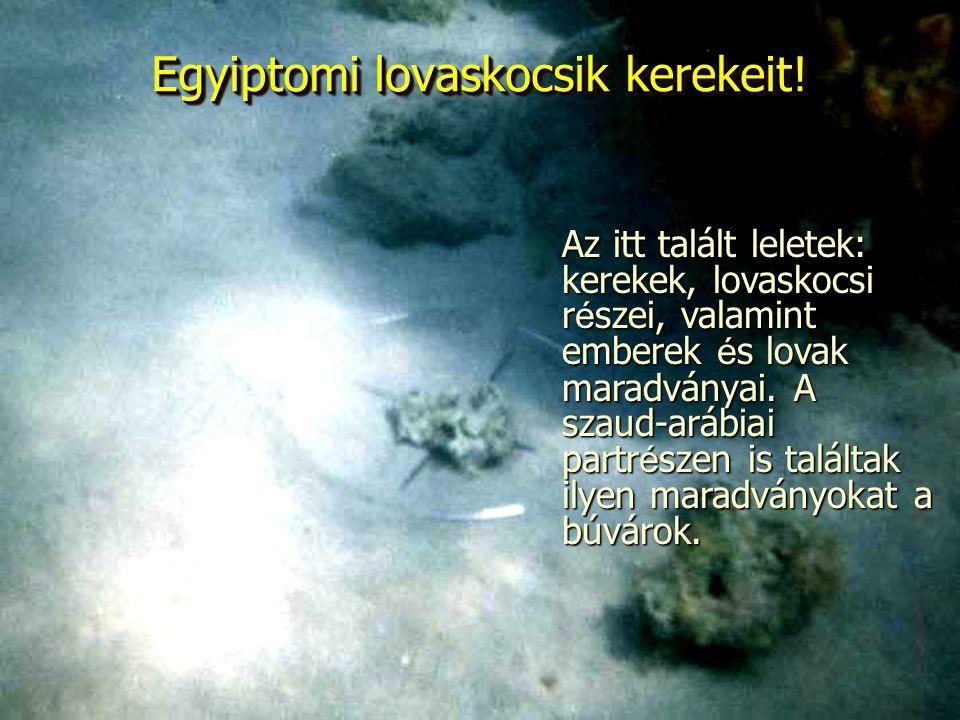 Egyiptomi lovaskocsik kerekeit! Az itt talált leletek: kerekek, lovaskocsi részei, valamint emberek és lovak maradványai. A szaud-arábiai partrészen i