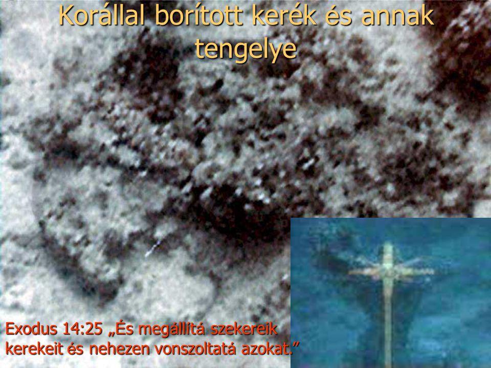 """Korállal borított kerék é s annak tengelye Exodus 14:25 """" É s meg á ll í t á szekereik kerekeit é s nehezen vonszoltat á azokat."""
