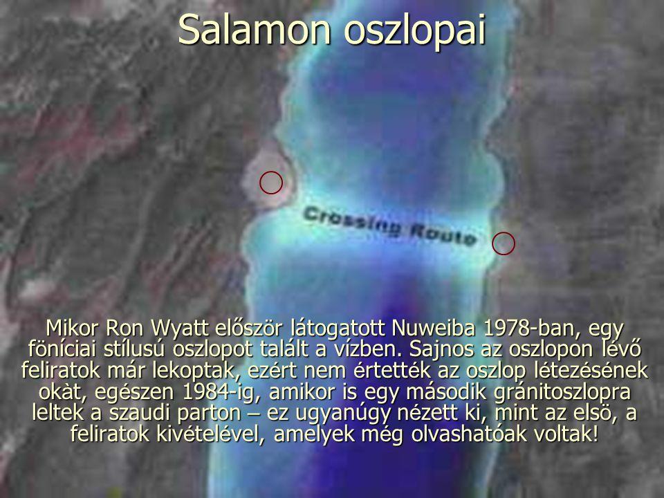 Salamon oszlopai Mikor Ron Wyatt elősz ö r látogatott Nuweiba 1978-ban, egy f ö níciai stílusú oszlopot talált a vízben. Sajnos az oszlopon l é vő fel