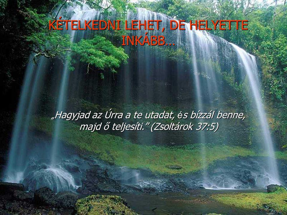 """KÉTELKEDNI LEHET, DE HELYETTE INKÁBB… """" Hagyjad az Úrra a te utadat, é s bízzál benne, majd ő teljesíti. (Zsoltárok 37:5)"""