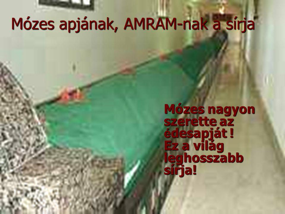 Mózes nagyon szerette az é desapját ! Ez a világ leghosszabb sírja! Mózes apjának, AMRAM-nak a sírja