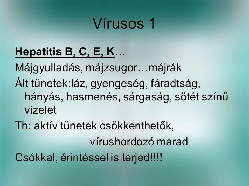 Vírusos 1 Hepatitis B, C, E, K… Májgyulladás, májzsugor…májrák Ált tünetek:láz, gyengeség, fáradtság, hányás, hasmenés, sárgaság, sötét színű vizelet