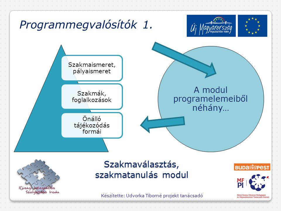 Készítette: Udvorka Tiborné projekt tanácsadó Szakmaismeret, pályaismeret Szakmák, foglalkozások Önálló tájékozódás formái A modul programelemeiből néhány… Programmegvalósítók 1.