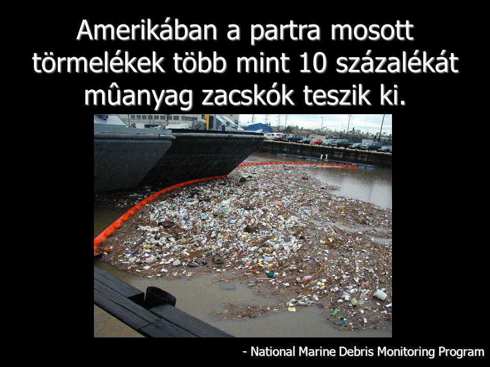 Amerikában a partra mosott törmelékek több mint 10 százalékát mûanyag zacskók teszik ki.