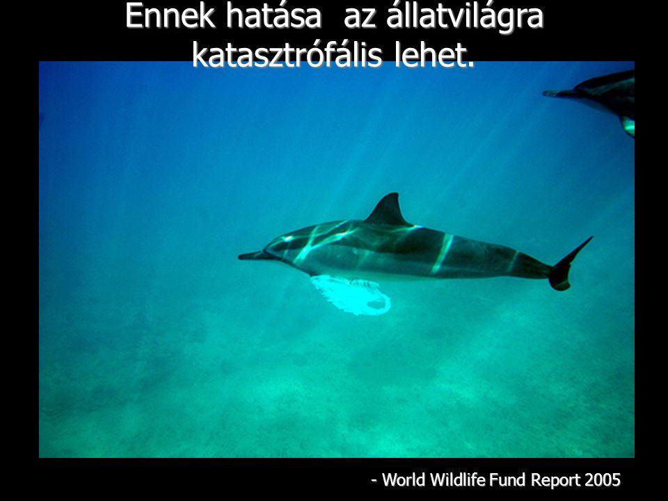 Ennek hatása az állatvilágra katasztrófális lehet. - World Wildlife Fund Report 2005