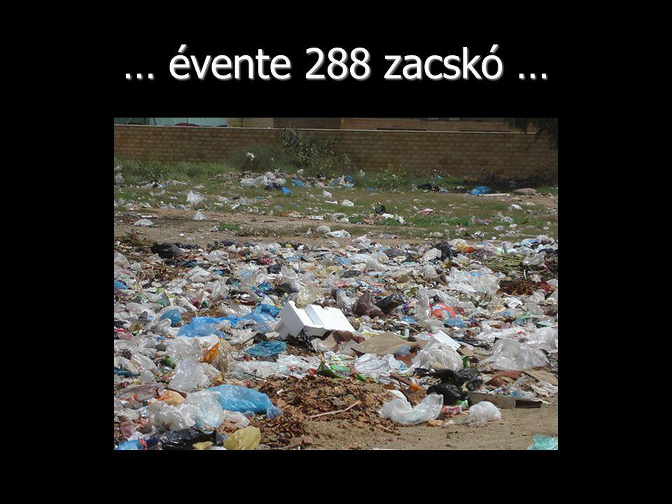 … évente 288 zacskó …
