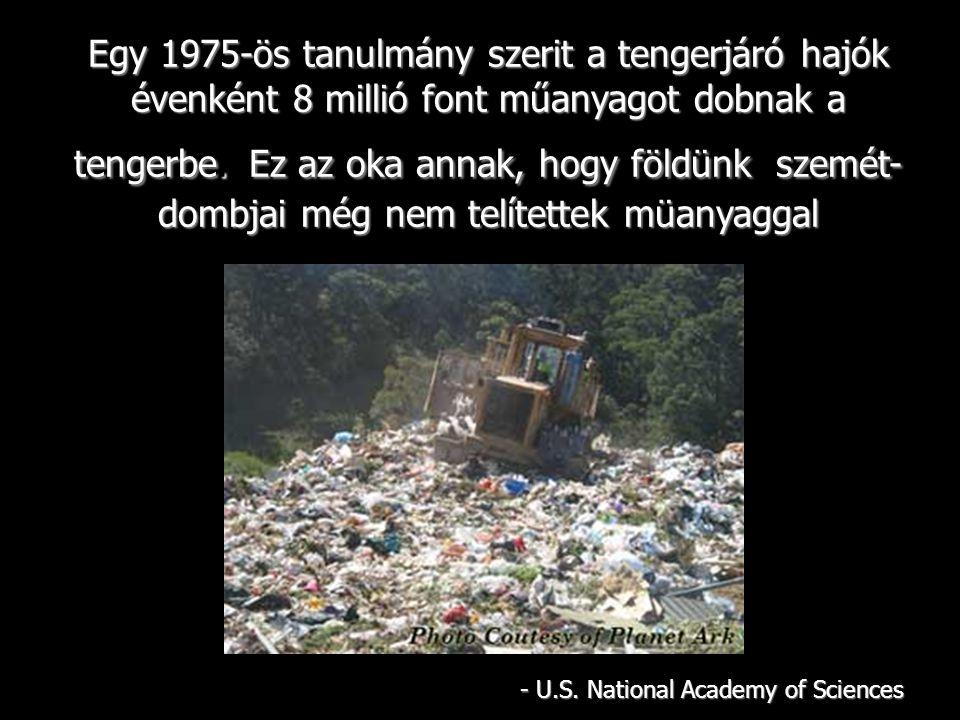 Egy 1975-ös tanulmány szerit a tengerjáró hajók évenként 8 millió font műanyagot dobnak a tengerbe.Ez az oka annak, hogy földünk szemét- dombjai még nem telítettek müanyaggal Egy 1975-ös tanulmány szerit a tengerjáró hajók évenként 8 millió font műanyagot dobnak a tengerbe.