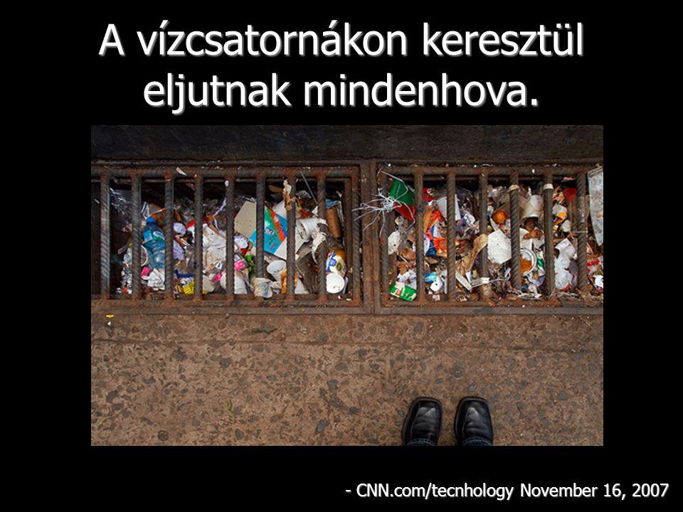 A vízcsatornákon keresztül eljutnak mindenhova. - CNN.com/tecnhology November 16, 2007