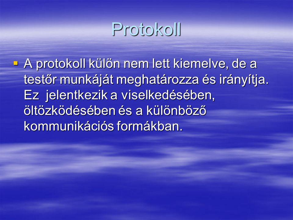 Protokoll  A protokoll külön nem lett kiemelve, de a testőr munkáját meghatározza és irányítja. Ez jelentkezik a viselkedésében, öltözködésében és a