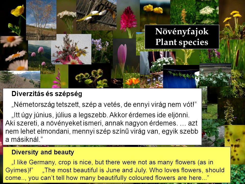 """Növényfajok Plant species Diverzitás és szépség """"Németország tetszett, szép a vetés, de ennyi virág nem vót!"""" """"Itt úgy június, július a legszebb. Akko"""