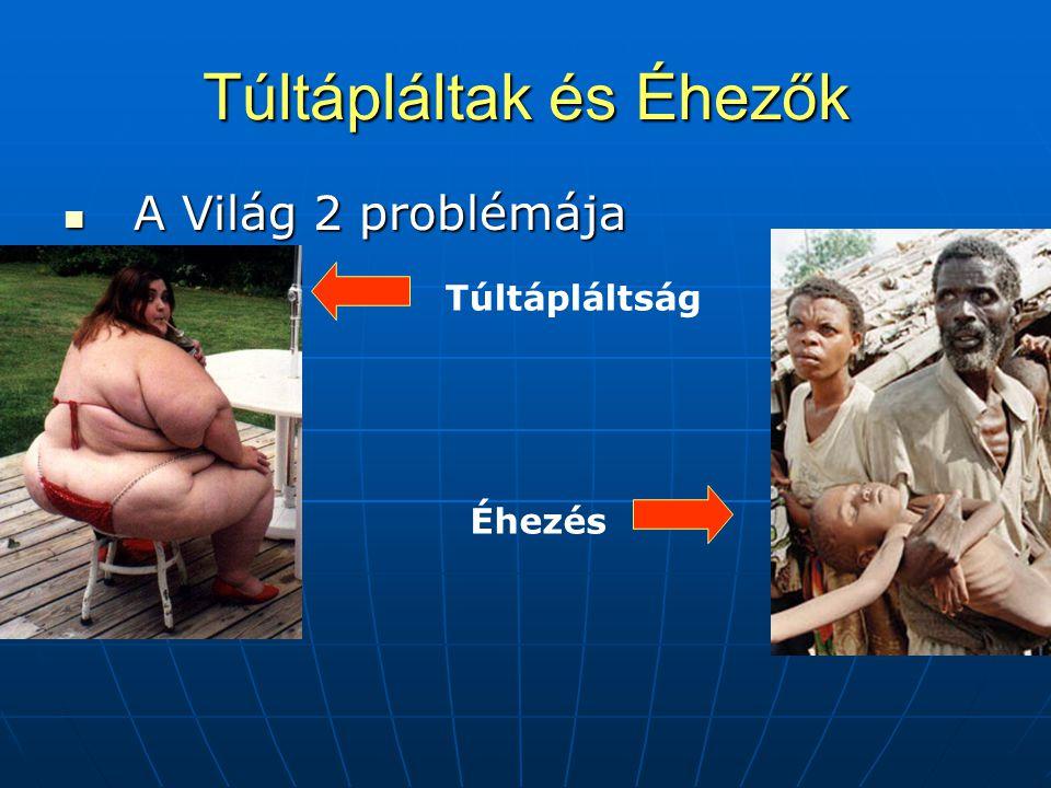 Túltápláltak és Éhezők  A Világ 2 problémája Éhezés Túltápláltság