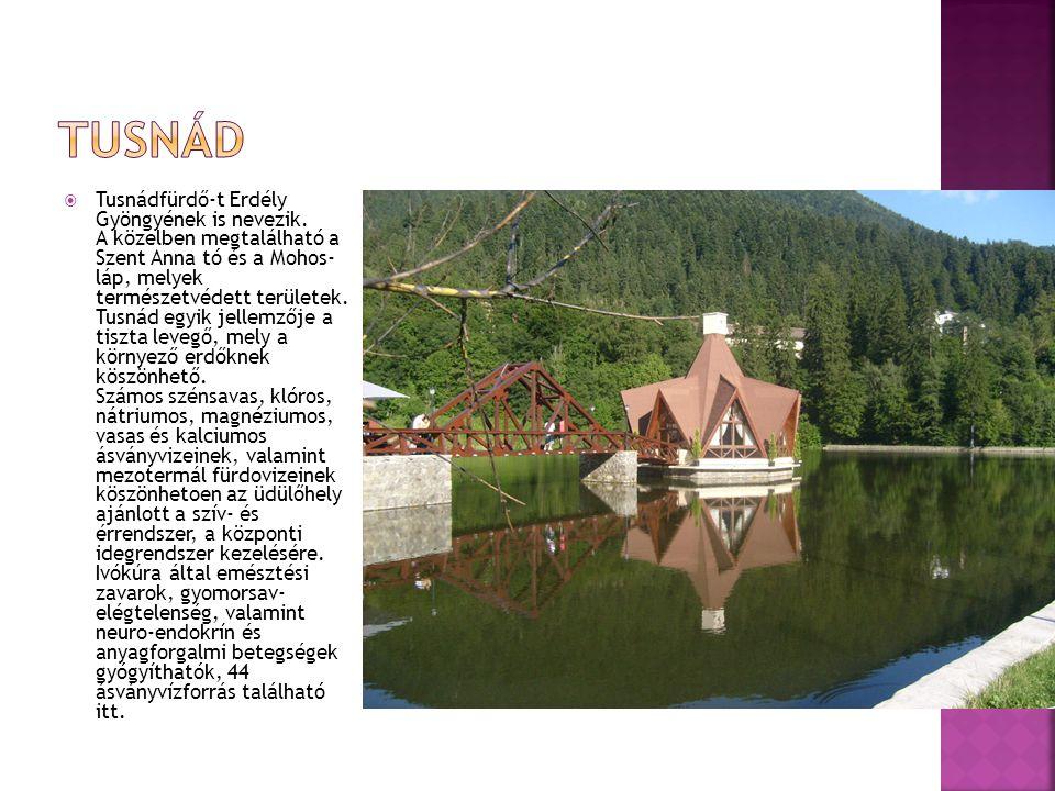 Tusnádfürdő-t Erdély Gyöngyének is nevezik. A közelben megtalálható a Szent Anna tó és a Mohos- láp, melyek természetvédett területek. Tusnád egyik