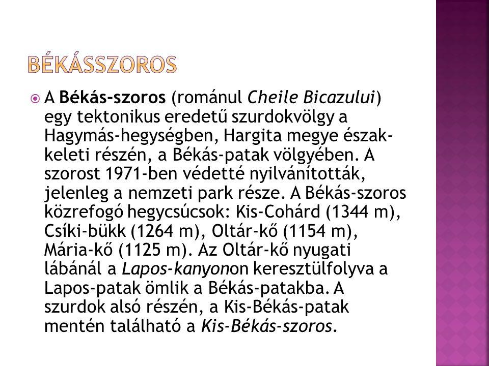  A Békás-szoros (románul Cheile Bicazului) egy tektonikus eredetű szurdokvölgy a Hagymás-hegységben, Hargita megye észak- keleti részén, a Békás-pata
