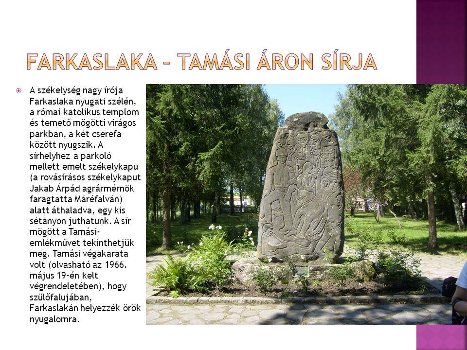  A székelység nagy írója Farkaslaka nyugati szélén, a római katolikus templom és temető mögötti virágos parkban, a két cserefa között nyugszik. A sír