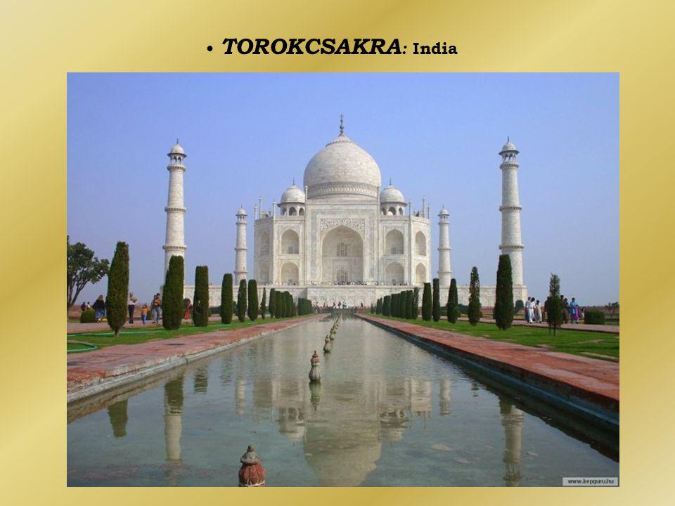 • TOROKCSAKRA : India
