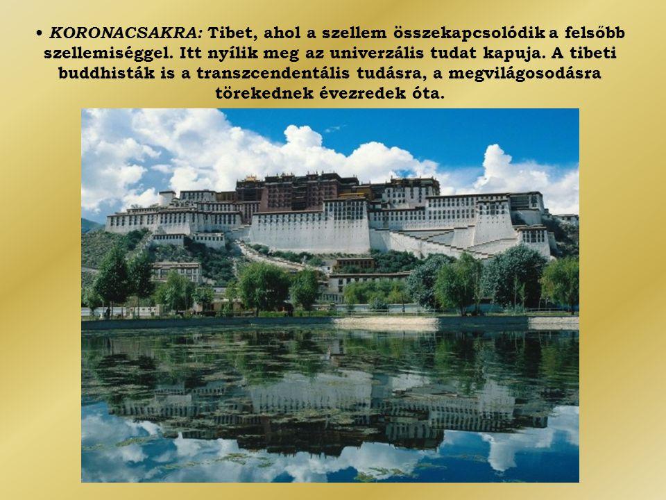 • KORONACSAKRA: Tibet, ahol a szellem összekapcsolódik a felsőbb szellemiséggel. Itt nyílik meg az univerzális tudat kapuja. A tibeti buddhisták is a