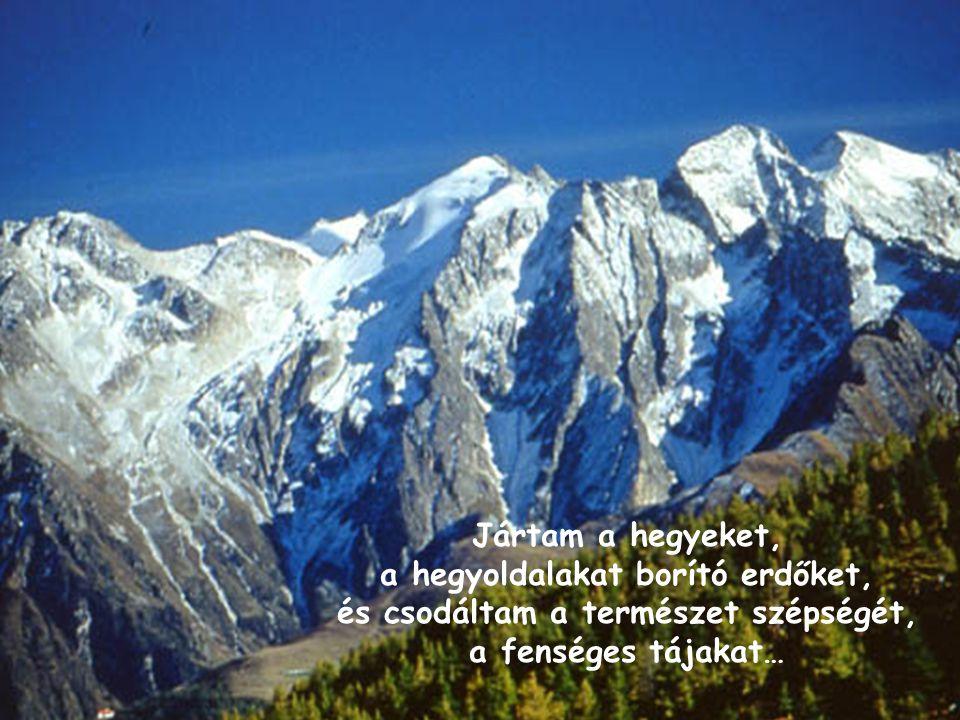 A hegyekben lehetőségünk nyílik arra, hogy megtapasztaljuk a felfelé vezető út nehézségeit.