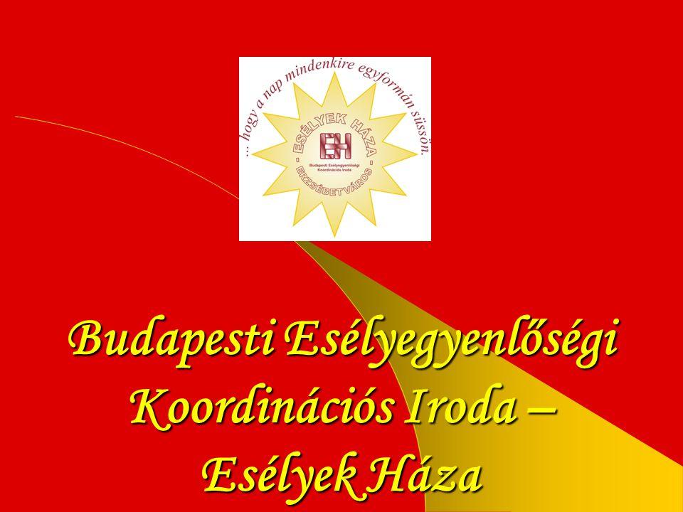 Országos Esélyegyenlőségi Hálózat • Esélyegyenlőségi Kormányhivatal hozta létre az EH hálózatot.