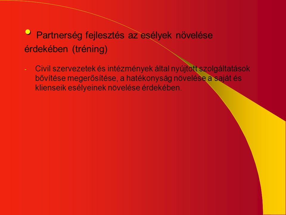 • • Partnerség fejlesztés az esélyek növelése érdekében (tréning) - Civil szervezetek és intézmények által nyújtott szolgáltatások bővítése megerősíté