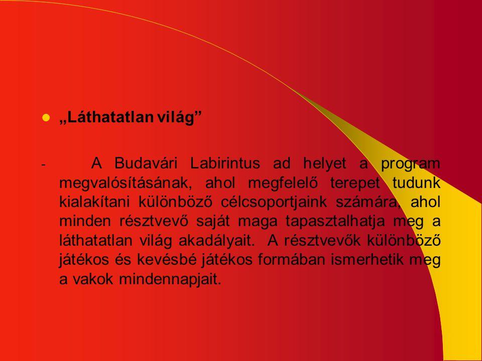 """ """"Láthatatlan világ"""" - A Budavári Labirintus ad helyet a program megvalósításának, ahol megfelelő terepet tudunk kialakítani különböző célcsoportjain"""