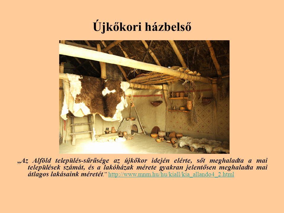"""Újkőkori házbelső """"Az Alföld település-sűrűsége az újkőkor idején elérte, sőt meghaladta a mai települések számát, és a lakóházak mérete gyakran jelentősen meghaladta mai átlagos lakásaink méretét. http://www.mnm.hu/hu/kiall/kia_allando4_2.htmlhttp://www.mnm.hu/hu/kiall/kia_allando4_2.html"""