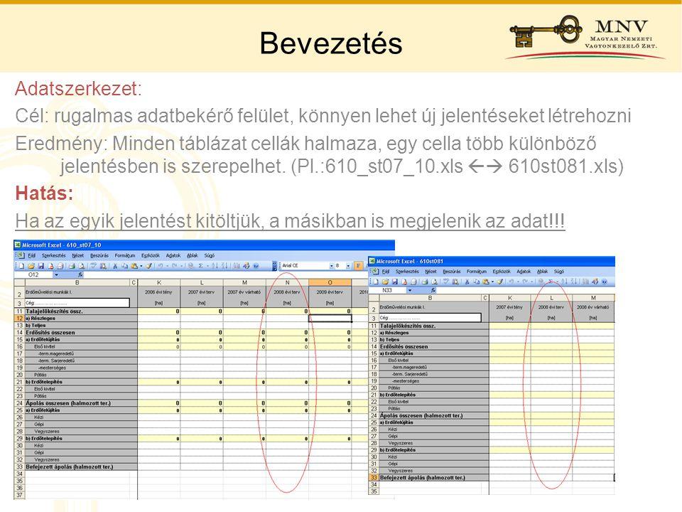 Bevezetés Adatszerkezet: Cél: rugalmas adatbekérő felület, könnyen lehet új jelentéseket létrehozni Eredmény: Minden táblázat cellák halmaza, egy cell