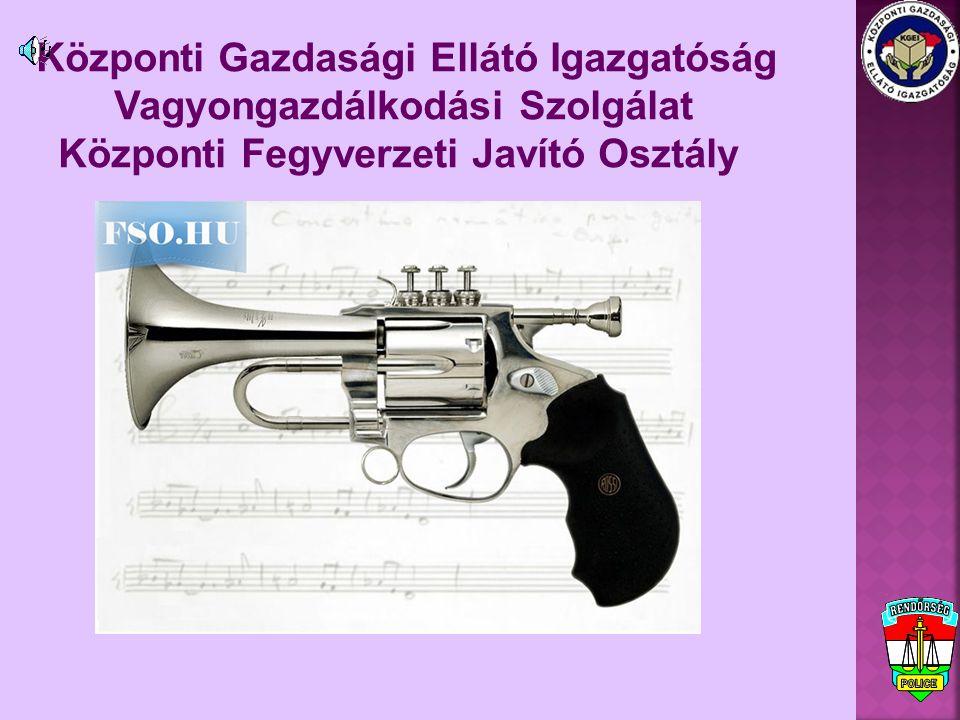 Központi GEI vezetője: dr.Fehér Katalin r.