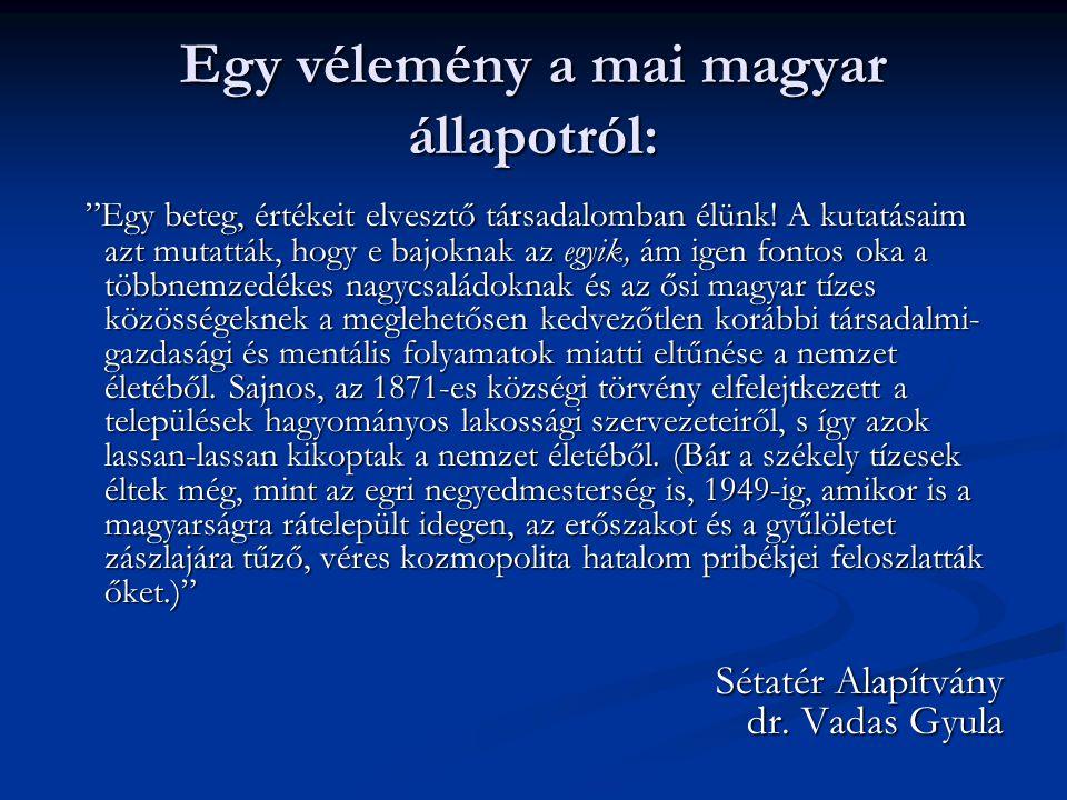Egy vélemény a mai magyar állapotról: Egy beteg, értékeit elvesztő társadalomban élünk.