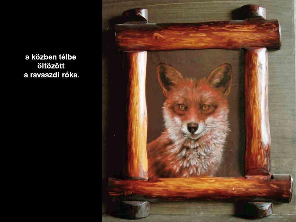 Makkos tölgyfa lapra került a portré és gomba,