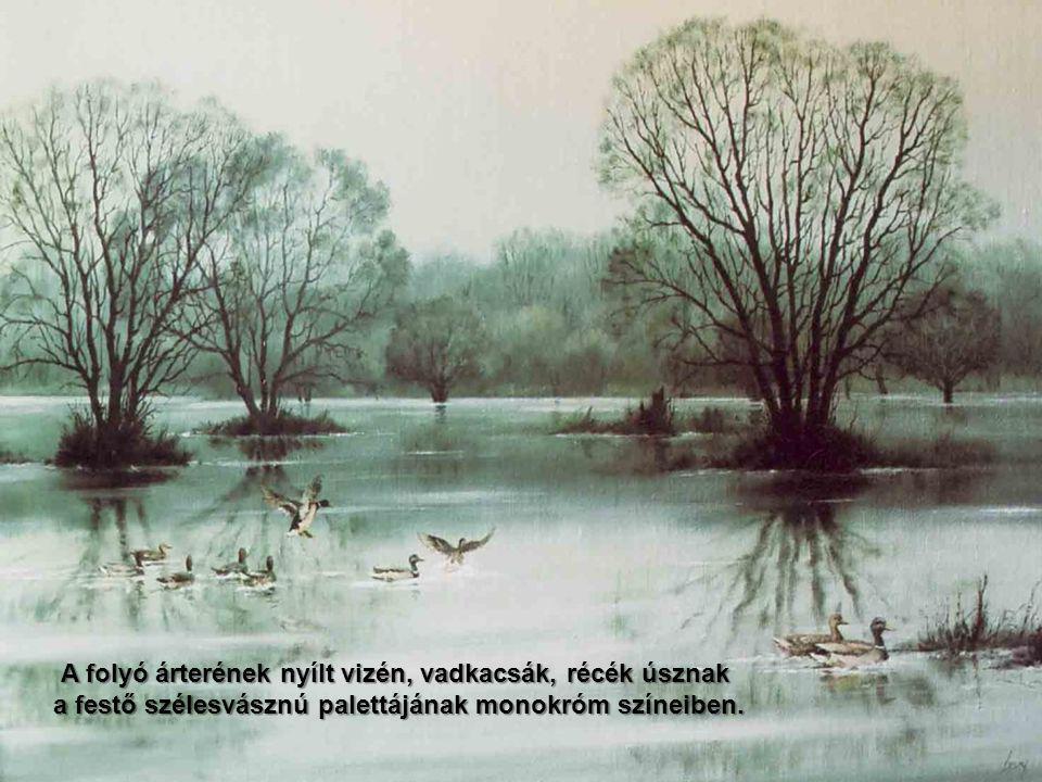 és a tó partjára repíti őt, ahol fűzfák közt gyülekeznek a víz madarai.