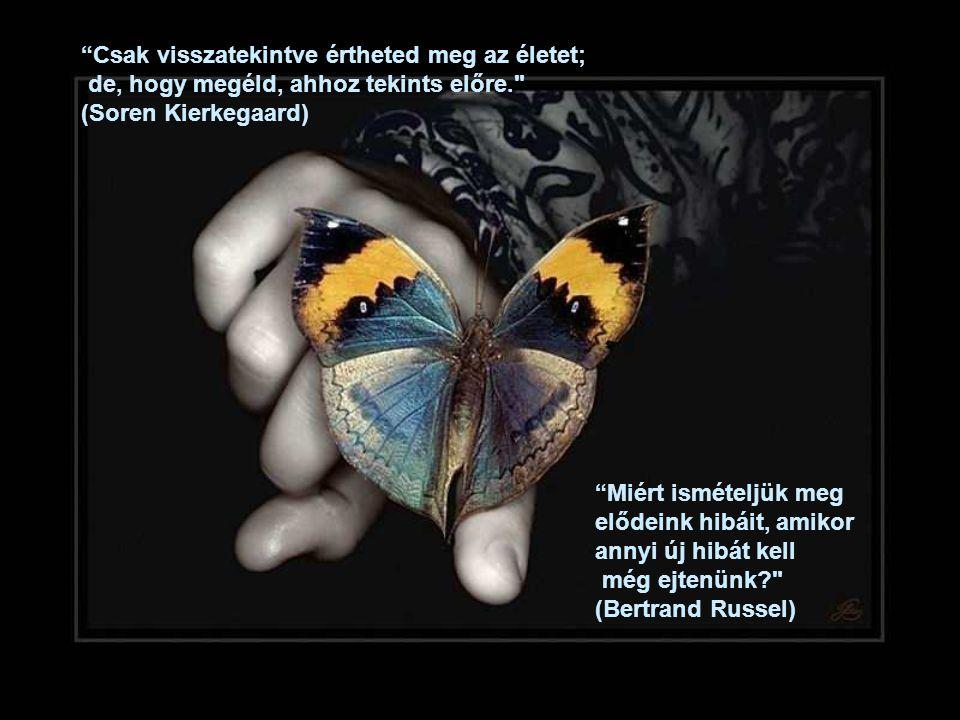 Csak visszatekintve értheted meg az életet; de, hogy megéld, ahhoz tekints előre. (Soren Kierkegaard) Miért ismételjük meg elődeink hibáit, amikor annyi új hibát kell még ejtenünk? (Bertrand Russel)