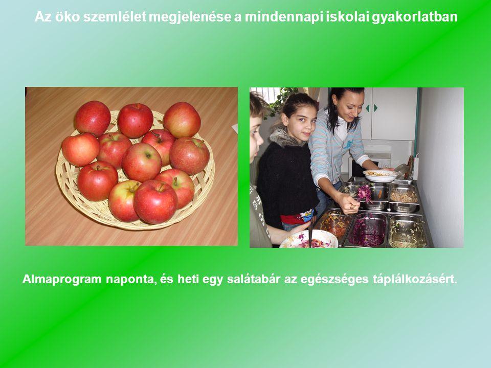 Almaprogram naponta, és heti egy salátabár az egészséges táplálkozásért.