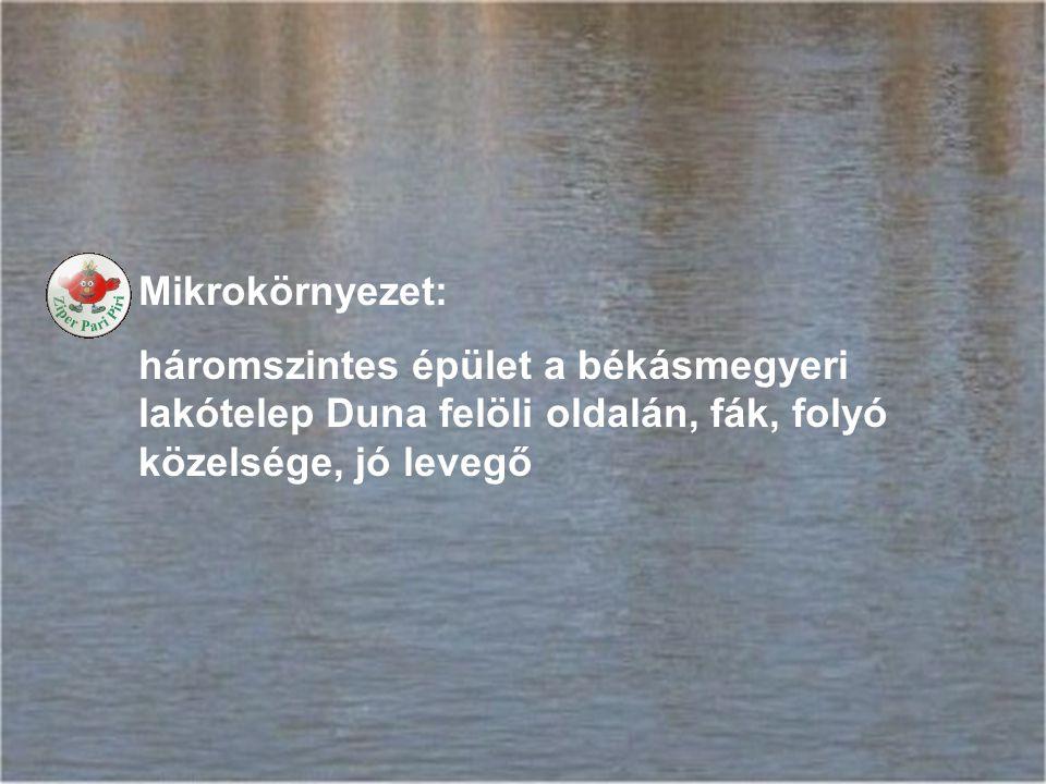 Mikrokörnyezet: háromszintes épület a békásmegyeri lakótelep Duna felöli oldalán, fák, folyó közelsége, jó levegő
