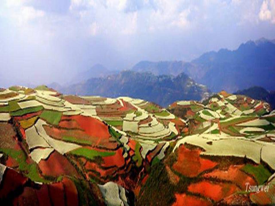 A terület minden négyzetcentiméterén folyamatos a gazdálkodás, s kérdés, hogy az erős talajerózió miatt meddig marad meg a táj ebben a szépségében? Do