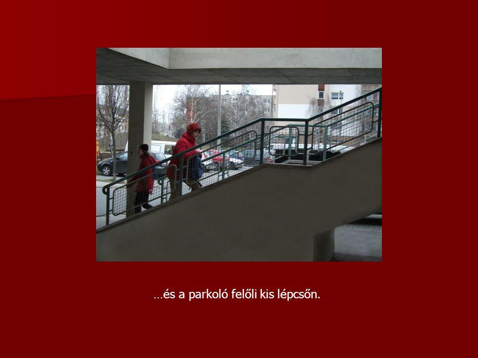 Központi könyvtárunk kedd és vasárnap kivételével nyitva áll az olvasók előtt.