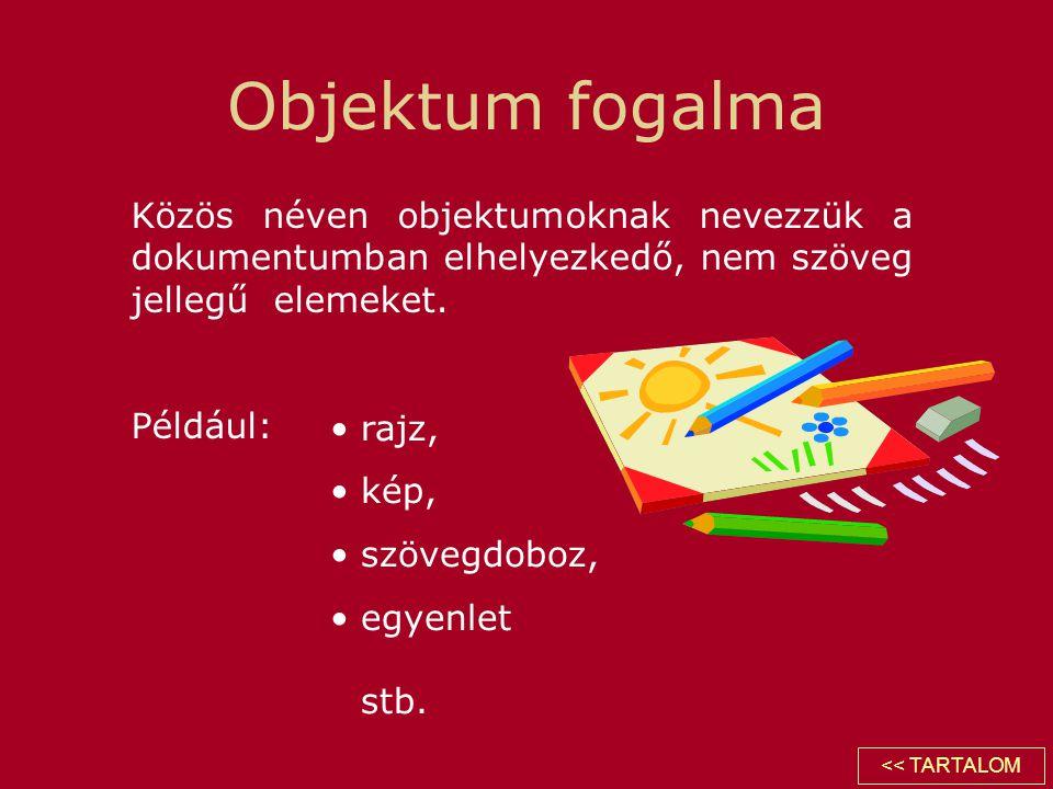 Objektum fogalma Közös néven objektumoknak nevezzük a dokumentumban elhelyezkedő, nem szöveg jellegű elemeket. Például: •rajz, •kép, •szövegdoboz, •eg
