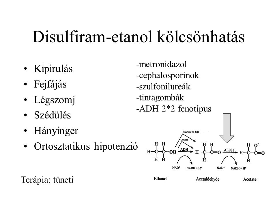 Disulfiram-etanol kölcsönhatás •Kipirulás •Fejfájás •Légszomj •Szédülés •Hányinger •Ortosztatikus hipotenzió Terápia: tüneti -metronidazol -cephalosporinok -szulfonilureák -tintagombák -ADH 2*2 fenotípus