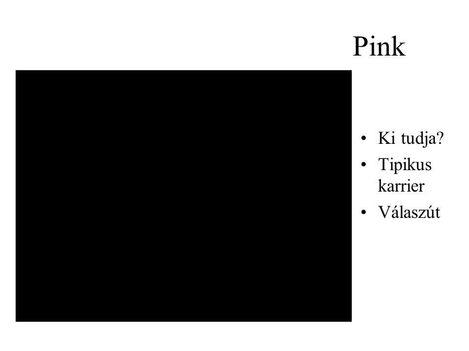 Pink •Ki tudja? •Tipikus karrier •Válaszút