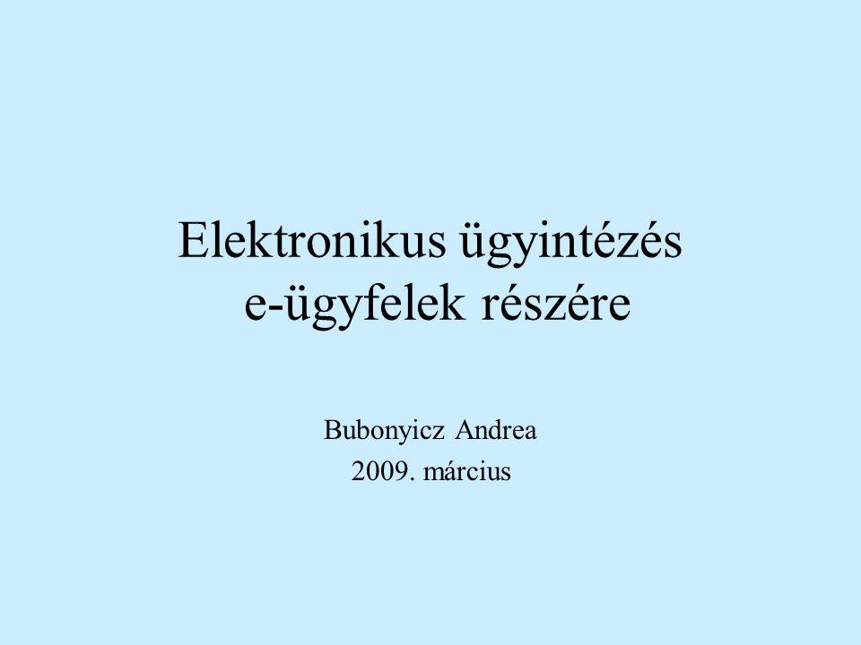 Elektronikus ügyintézés e-ügyfelek részére Bubonyicz Andrea 2009. március