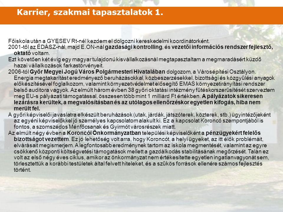 Főiskola után a GYESEV Rt-nél kezdem el dolgozni kereskedelmi koordinátorként. 2001-től az ÉDÁSZ-nál, majd E.ON-nál gazdasági kontrolling, és vezetői