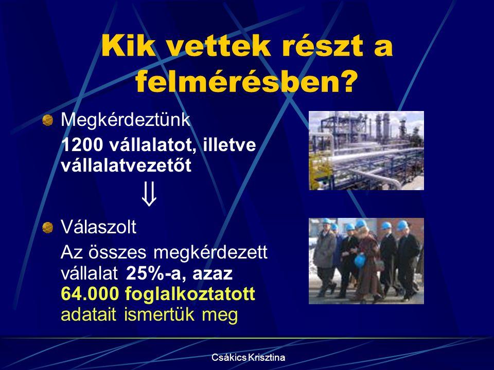 Csákics Krisztina Kik vettek részt a felmérésben.