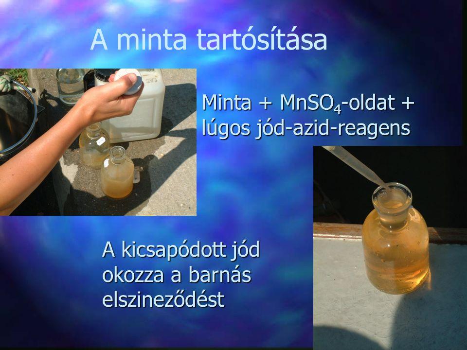 A minta tartósítása Minta + MnSO 4 -oldat + lúgos jód-azid-reagens A kicsapódott jód okozza a barnás elszineződést