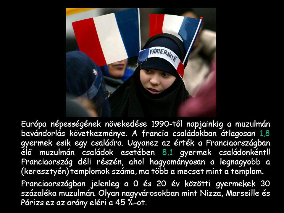 -Néhány európai ország családainak termékenységi indexe (2007): -Franciaország 1,8 – -Anglia 1,6 – -Görögország 1,3 – Magyarország 1,32 - (2009) -Néme
