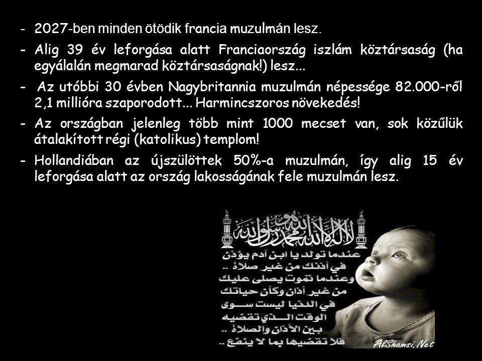 Európa népességének növekedése 1990-től napjainkig a muzulmán bevándorlás következménye. A francia családokban átlagosan 1,8 gyermek esik egy családra